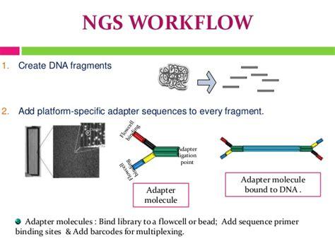 next sequencing illumina next generation sequencing