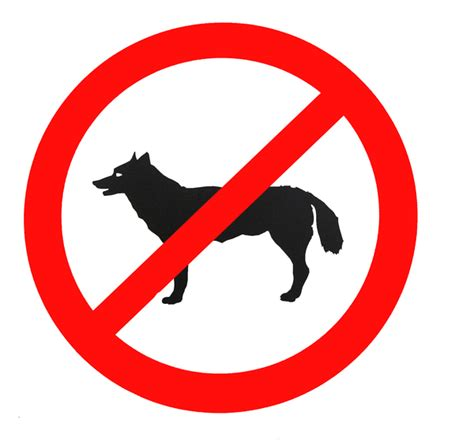 no dogs allowed sign free stock photos rgbstock free stock images no dogs allowed mzacha april