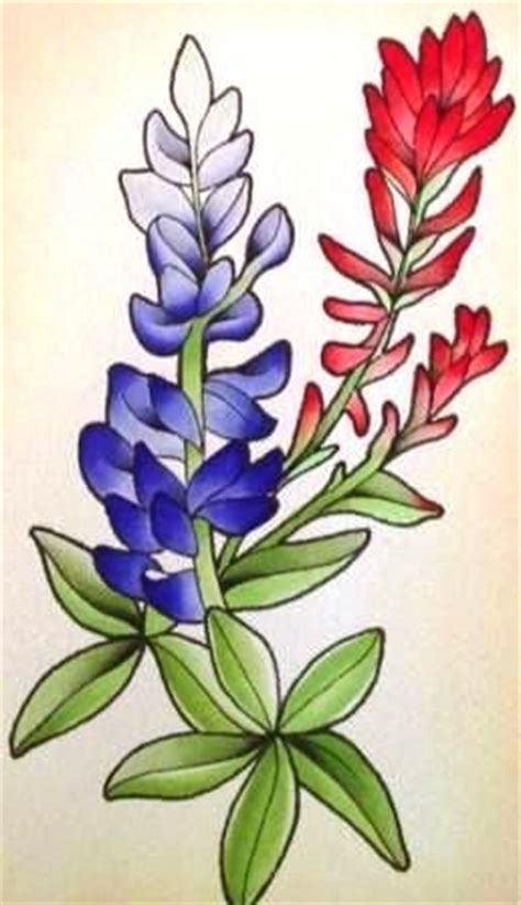 indian paintbrush tattoo traditional bluebonnet www pixshark images