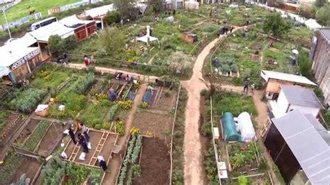 imagenes de huertas urbanas huertos urbanos la reina santiago chile youtube