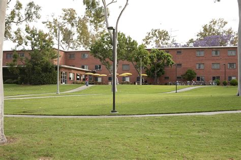 housing csulb housing csulb 28 images neo zoe at pine housing beachside college cus apartments