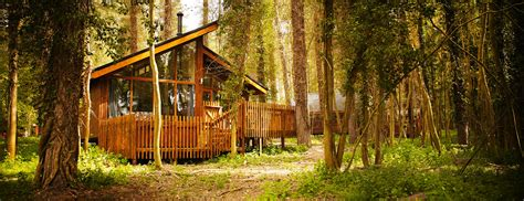 Tree Cabin Holidays by Thorpe Forest Norfolk Log Cabin Lodge Holidays Breaks