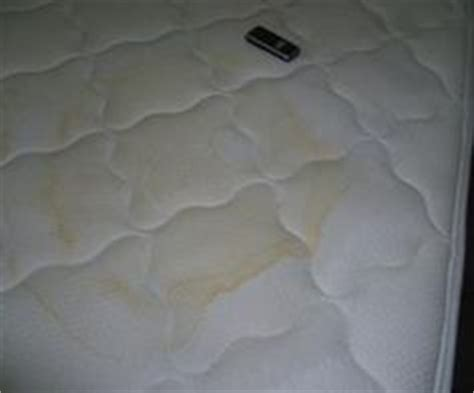 Water Stain On Mattress by Urine Stains On