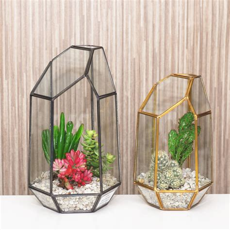 Terrarium Vases by Geometric Glass Vase Terrarium By Dingading Terrariums