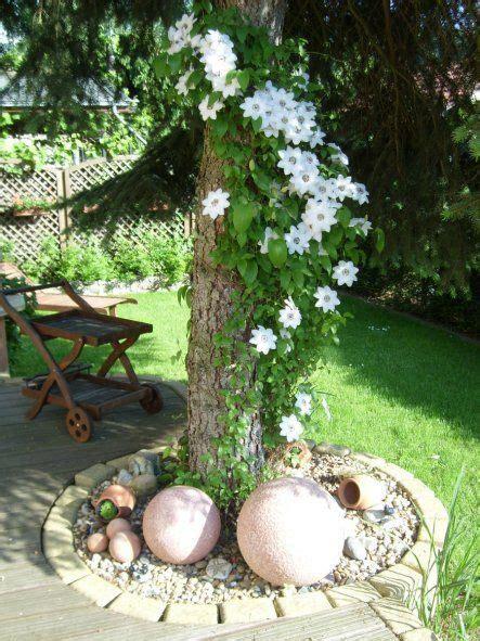 wie einen hinterhof patio gestaltet garten bl 252 te clematis an baum gestaltungsidee garden