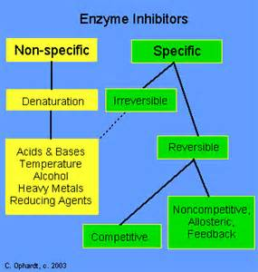 Types Of Proton Inhibitors Enzyme Inhibitors