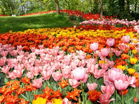 giardini in fiore visitare i giardini fioriti pi 249 belli d italia i