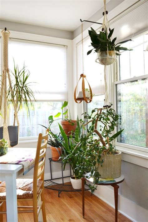 Beautiful Apartment Plants Beautiful Blooms Bouquets More Our Best Plant Advice