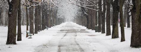 neumaticos de invierno y cadenas 191 qu 233 es mejor neum 225 ticos de invierno o cadenas canalmotor