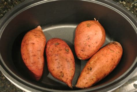 potato pot potato pot opencast related keywords potato pot opencast