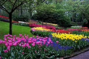 jardiner 237 a 187 archivo 187 jardines con flores
