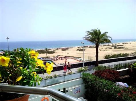 apartamentos baratos en el sur de gran canaria todo incluido apartamentos don palom 243 n playa del ingl 233 s gran canaria