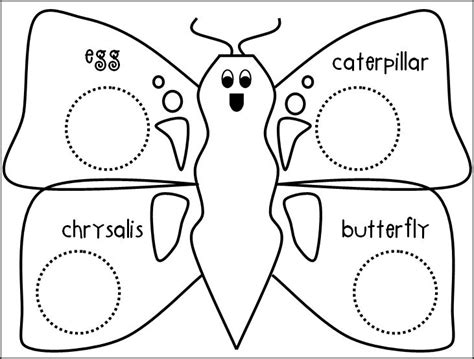 Cycle Of A Butterfly Worksheet For Kindergarten by The Of Teaching A Kindergarten Butterflies