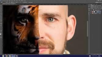 louis stilling 183 photoshop tutorial tiger face blend