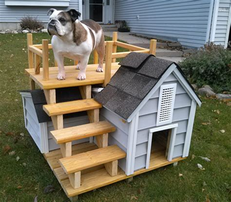 pics of dog houses pin dog house photos on pinterest
