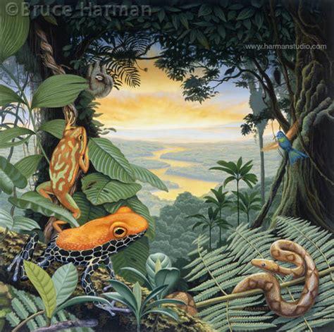 painting images quot rainforest quot painting