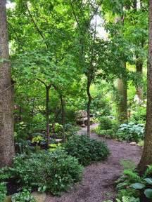 Woodlands Backyard by Best 25 Woodland Garden Ideas On