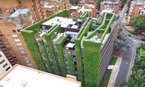 the world s largest vertical garden blooms with 85 000
