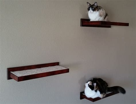 cat wall shelves cat climbing shelves and perches for walls