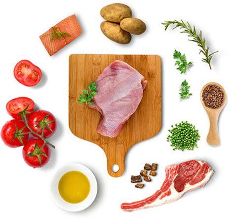 wellness simple food wellness simple limited ingredient diet grain free turkey