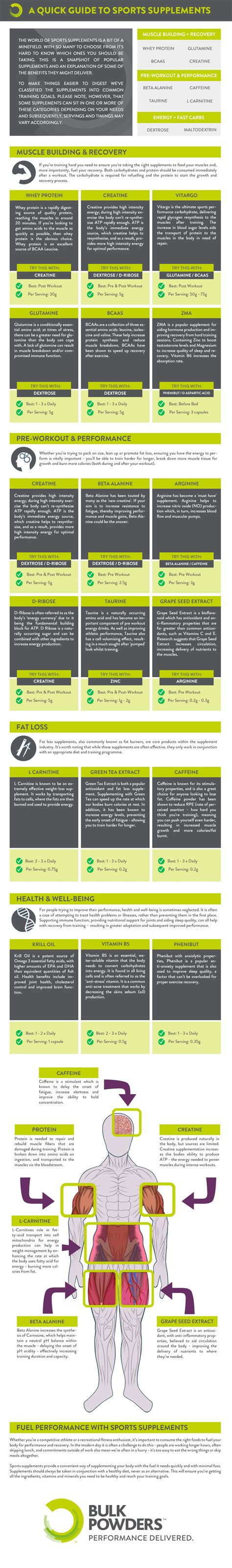 supplement infographic guide to sports supplements infographic best infographics
