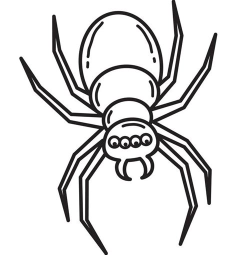 spider outline coloring page spider shape template 55 crafts colouring pages
