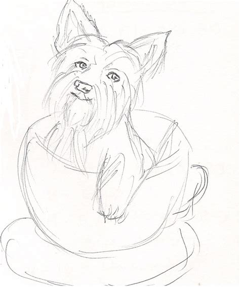 how does a yorkie stay yorkie in a cup by mariposa rosa on deviantart
