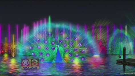 city festival of lights peacock to be featured in baltimore s light city