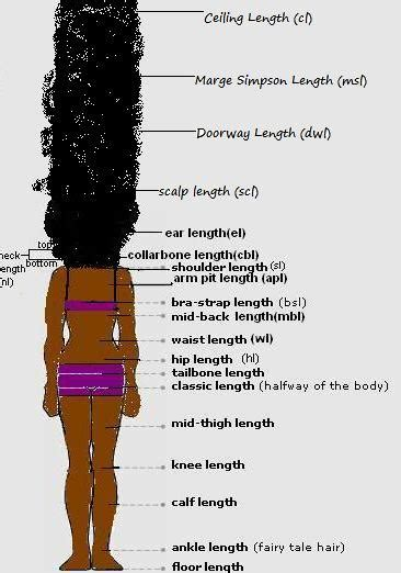 twa growth chart 17 best images about hair like cotton on pinterest her