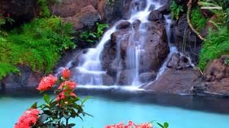 Beautiful Waterfalls With Flowers by Beautiful Waterfalls With Flowers Wallpaper