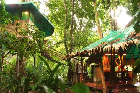 costa rica tree house top 10 unique hotels for tourists