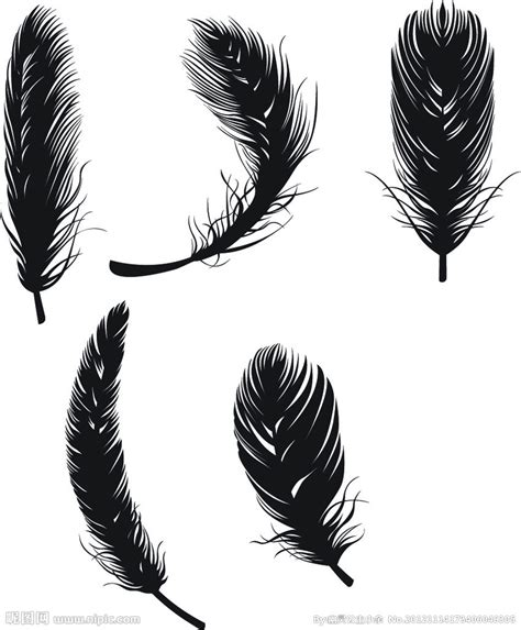 tattoo bulu burung 羽毛 禽类羽毛 黑色羽毛 鸟类 生物世界 矢量 ai矢量图 广告设计 广告设计 矢量图库 昵图网nipic com
