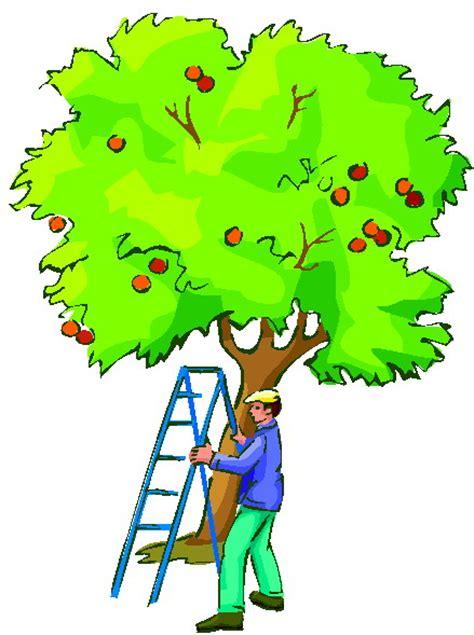 gardening clip clip clip gardening 736470