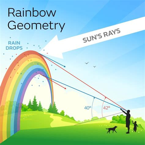 how many colors does a rainbow how are rainbows formed met office