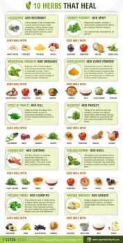herbs chart top 10 herbs that heal urban organic gardener