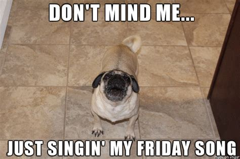 pug friday excited pug quotes