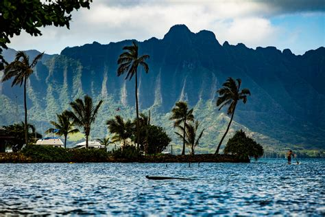 Of Hawaii Mba Vs Hawaii Pacific Mba by Vil Du Studere P 229 Hawai I Study Outside Sonor