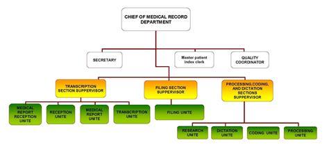 organization pattern of hospital pharmacy hospital pharmacy organizational chart pictures to pin on