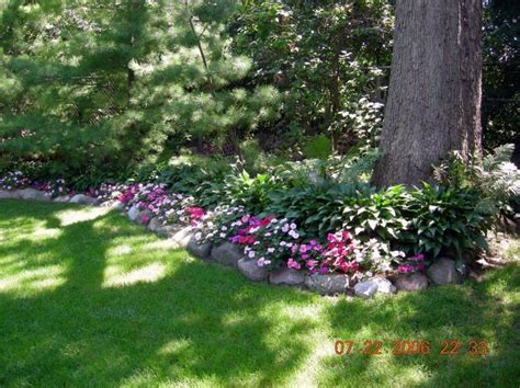 Rock Garden Plants For Shade Hostas And Impatiens Gardens Pinterest Gardens Garden Borders And The White