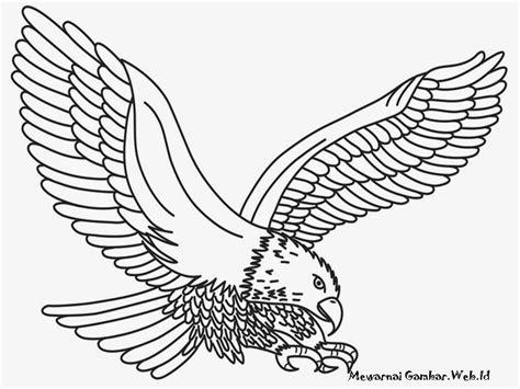 tutorial menggambar burung elang koleksi gambar foto animasi elang terbaru 2018 sapawarga