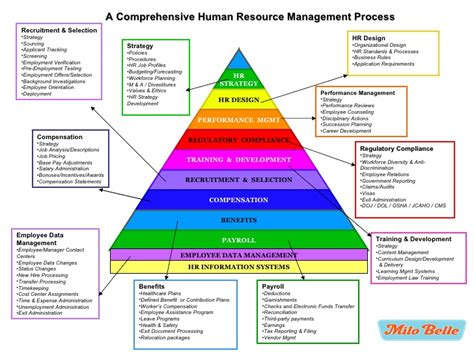 human resource vulnerability assessment