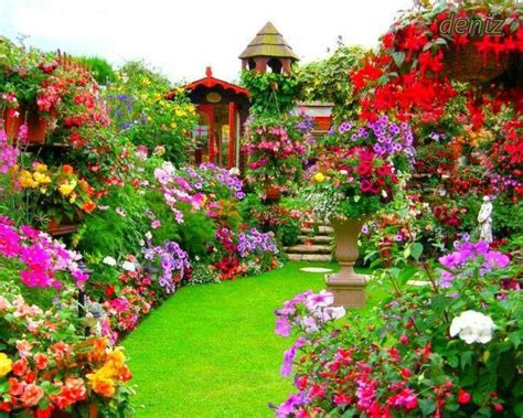 So Colorful Garden Beautiful Beautiful Garden Colorful Flower Garden