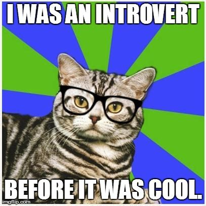 Introvert Meme - image tagged in hipster introvert cat imgflip