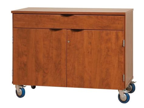 mobile storage cabinet with doors and 1 drawer lms