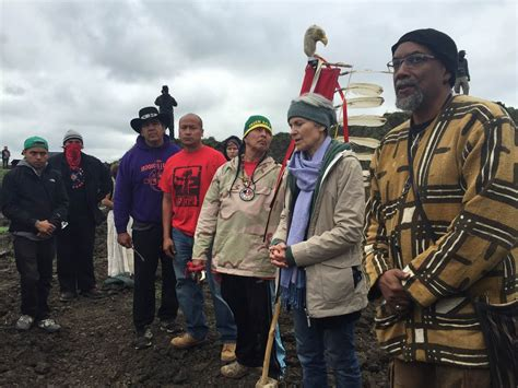Nd Court Records Access Green S Stein Charged In N Dakota Pipeline Protest Nbc News