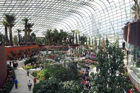 South Bay Botanical Garden Singapore S Supertree Sprouting Gardens By The Bay Set To Officially Open This June Inhabitat