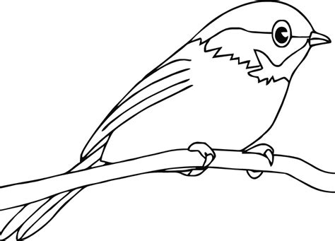 Coloring Pages Of A Bird Bird Coloring Pages To Print Coloring Home by Coloring Pages Of A Bird