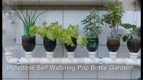 diy self watering herb garden fantastic diy watering systems for gardens gallery