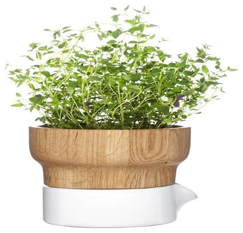 herb pots fix herb pot contemporary indoor pots and planters