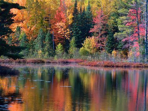 autumn colors die cuttin divas challenge 30 fall colors